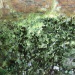 Des branches et des feuilles vert tendre se reflètent dans les eaux calmes en cette saison du Scorff.